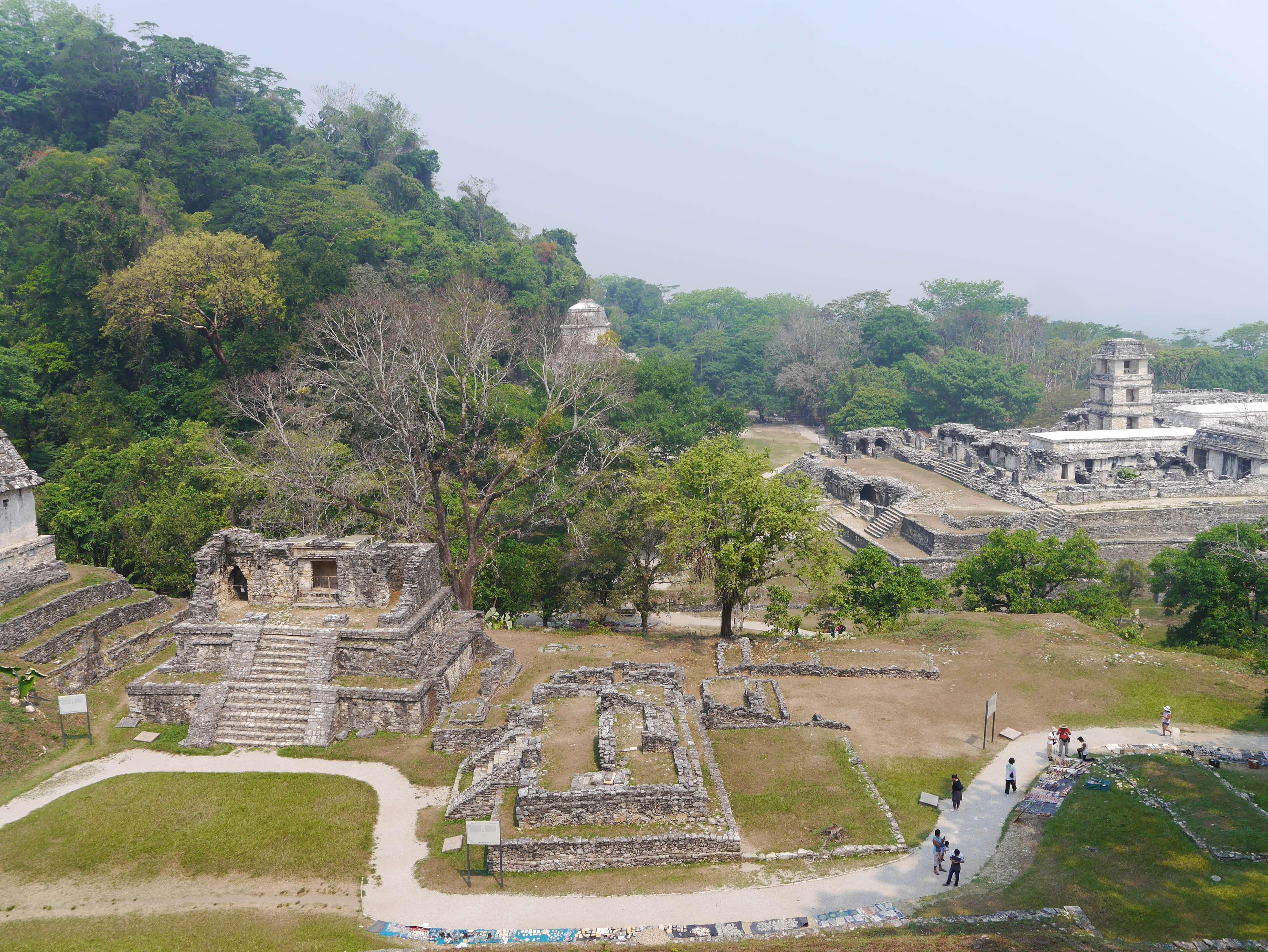 Palenque-sendero-templo-palacio-maya-selva