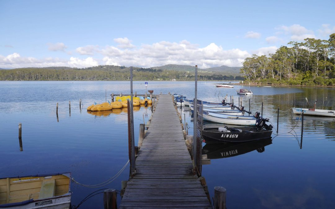 Merimbula-mangrove-boardwalk-boats
