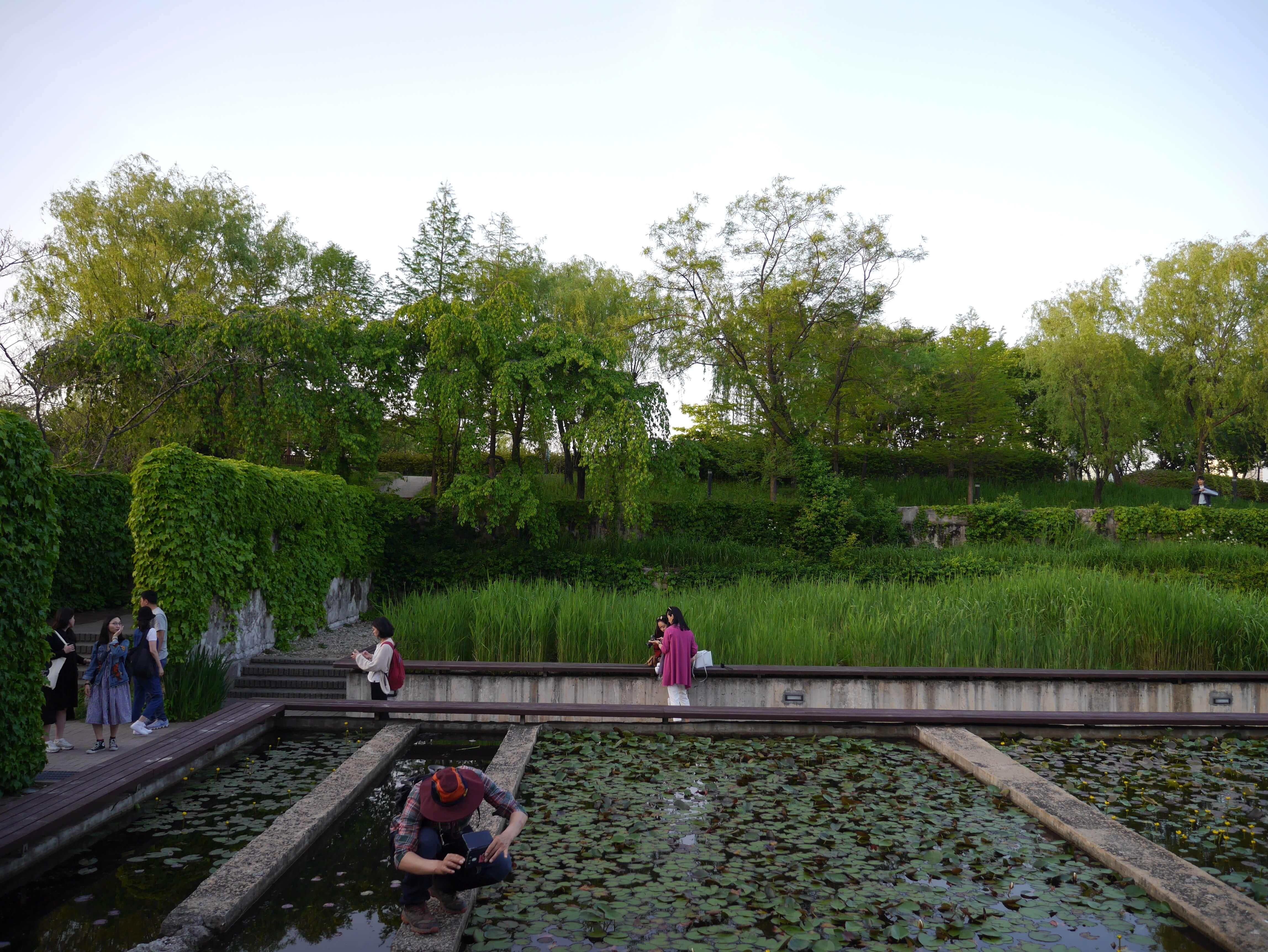 Parque-Seonyudo-Seúl-Corea-estanque-árboles